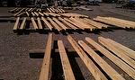 Timber Review for Texas Customer