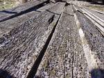 Park City Barnwood / Extreme Gray Barnwood with Lichens