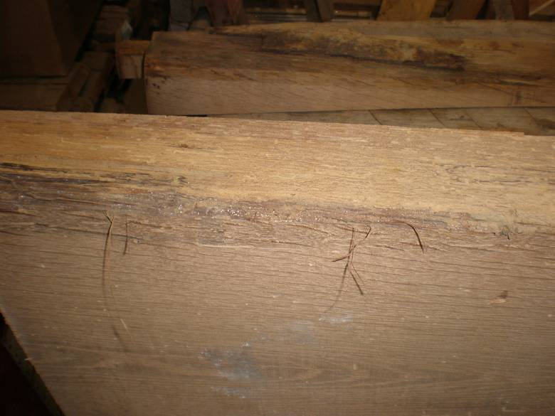 3x13 x 8' Oak Stair Tread / Note worm tracks and slight wane