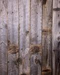 Antique Barnwood Gray Rough Lumber