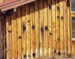 Redwood Siding Close-Up (Board and Bat) / Lucin Cutoff Redwood Siding